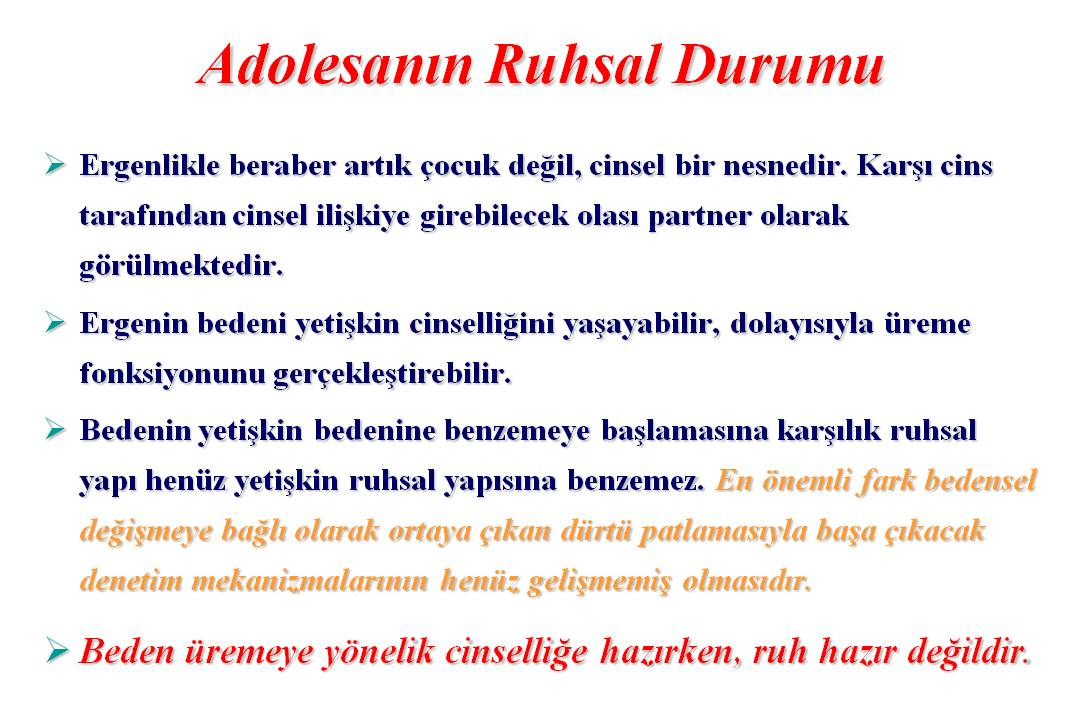 Prof. Dr. Süleyman Engin Akhan