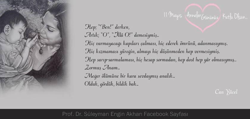 10271515_525118940926679_9120484400693320233_n Prof. Dr. Süleyman Engin Akhan